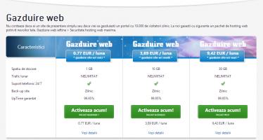 Site Web – tentacul în universul informaţiei