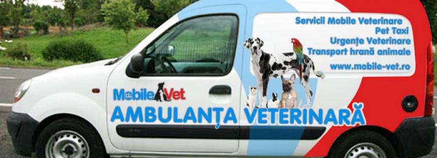 Vaccinarile animalelor de companie
