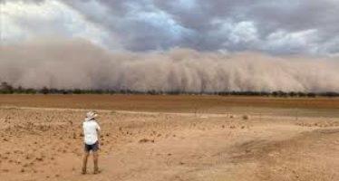 Vedetele care s-au mobilizat pentru salvarea Australiei