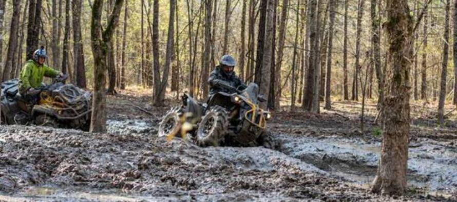 Patru ATV-uri sporty, puternice și agresive
